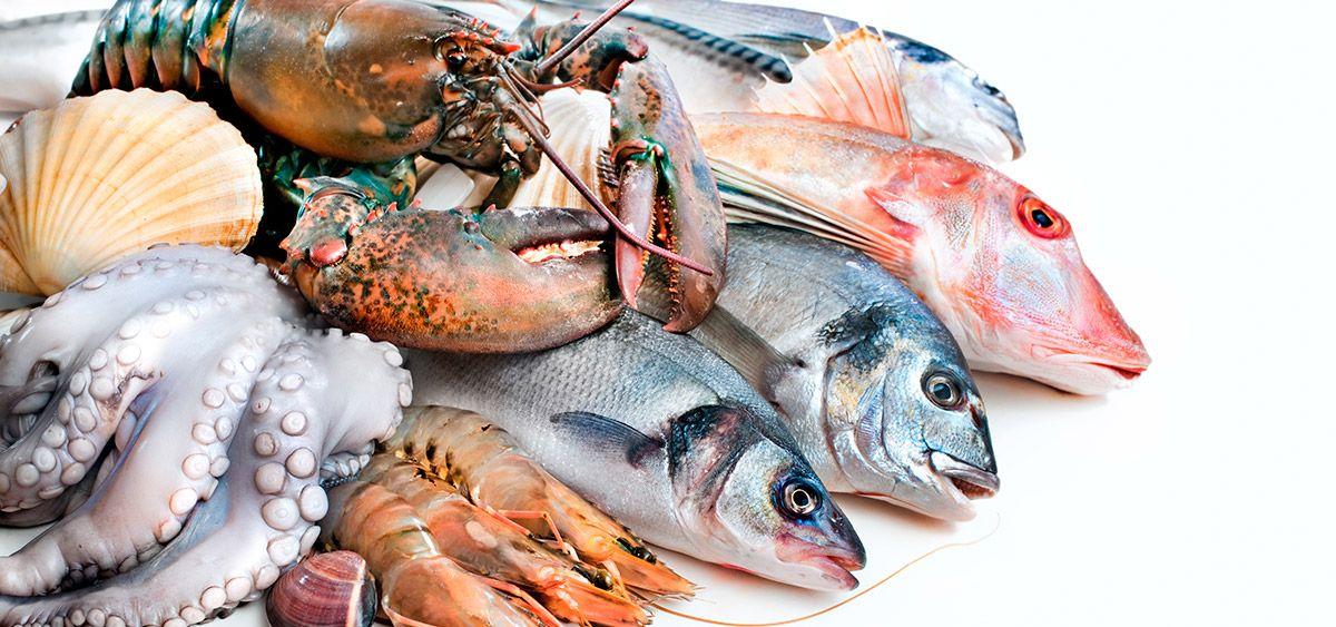 Filetes de pescados y mariscos en costa rica for Canelones de pescado y marisco
