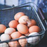 Distribuidores de huevo en Costa Rica