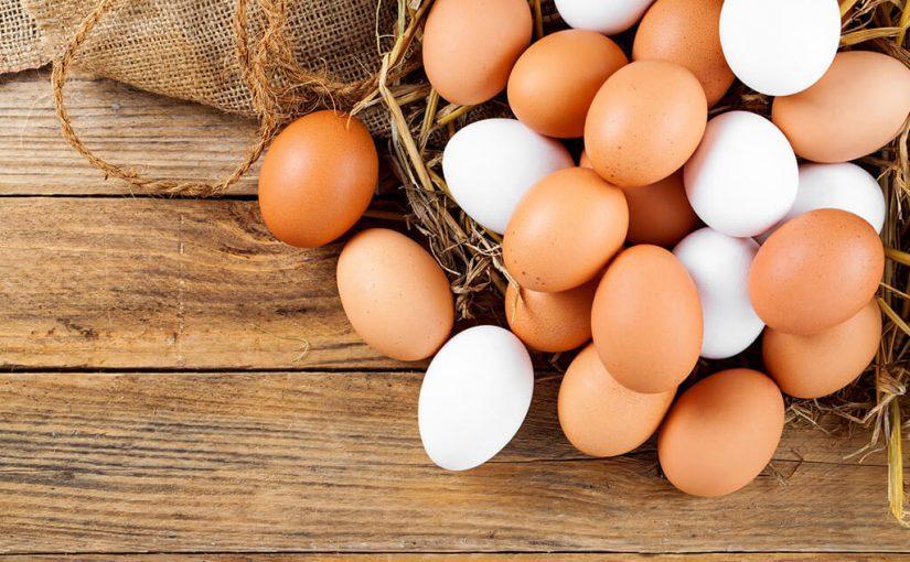 Productores de huevos en Costa Rica
